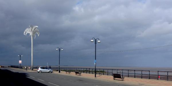 White Palm on the North Promenade