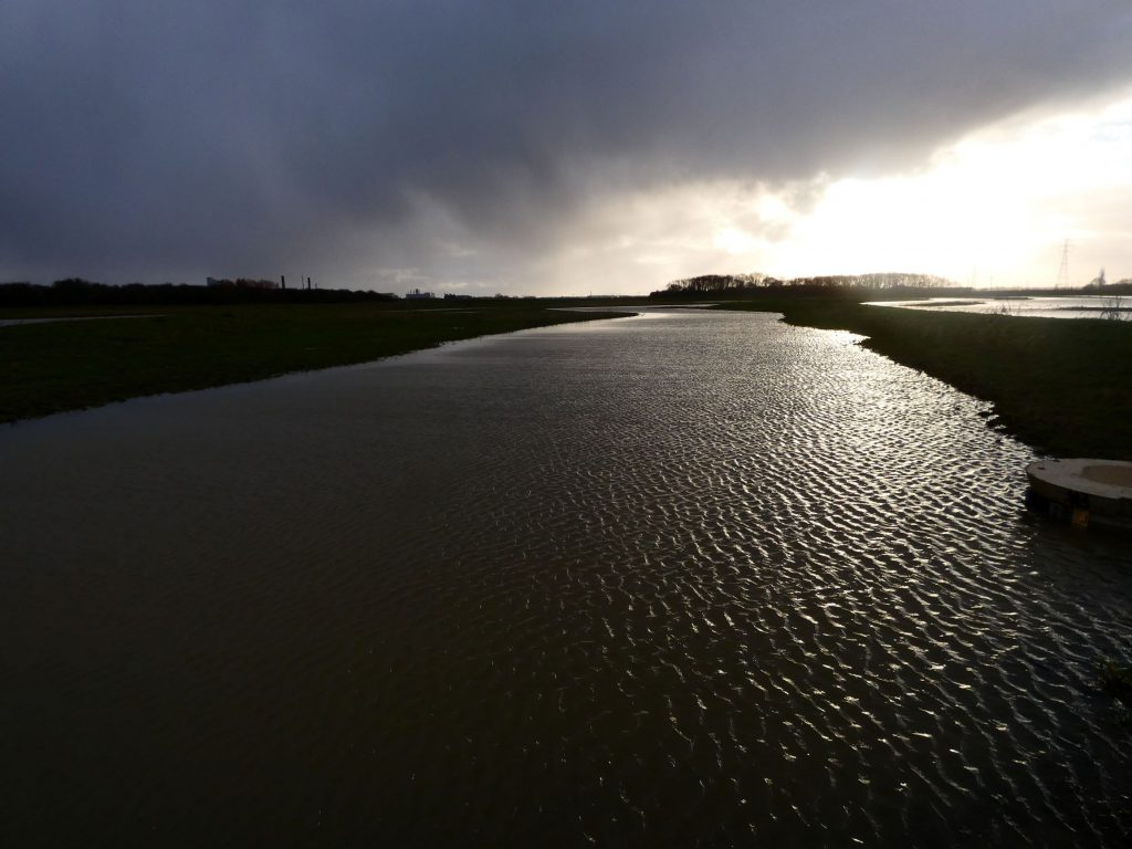 Image of Cress Marsh loooking west